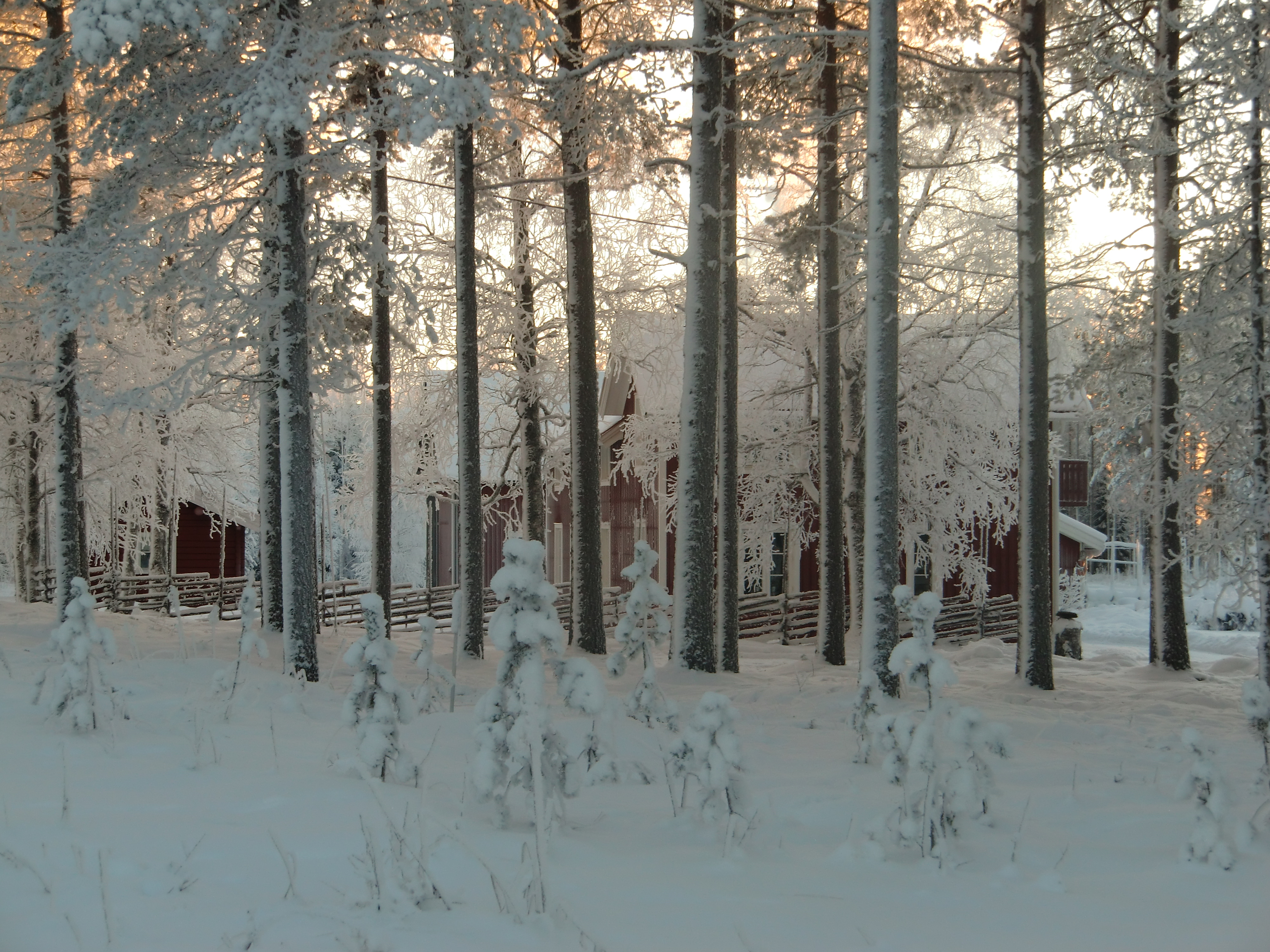 ingers vinterbild 3